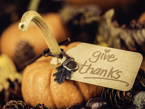 Giving Thanks>