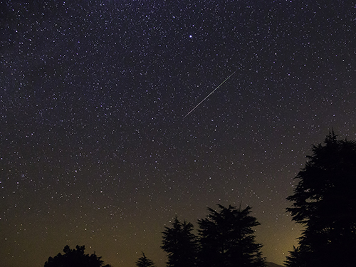Active Adults Pursue Perseid Stargazing